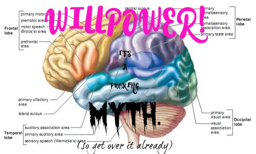 willpowermythbrain